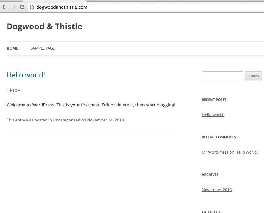 Wordpress Install - Site First Look